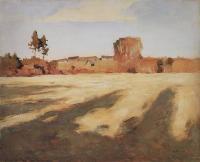 Сжатое поле. 1897