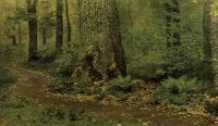 Тропинка в лиственном лесу. Папоротники. 1895
