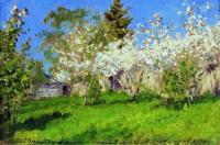 Цветущие яблони. 1896
