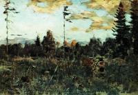 Срубленный лес. Поленница. 1898