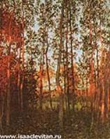 Последние лучи солнца.Осиновый лес.1897