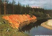 Лесистый берег. 1892