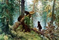 Утро в сосновом лесу (И.И. Шишкин)