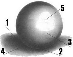 Поэтапная моделировка формы шара